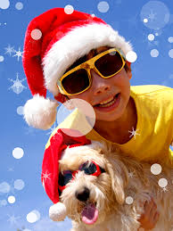 A collection of the top 49 doge phone wallpapers and backgrounds available for download for free. Images Maltese Bolognese Dogs Boys Christmas Children Winter 600x800