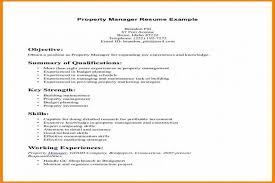 Good Summary For Resume Best Summary Skills Examples Durunugrasgrup