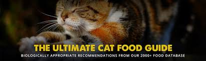 Cat Food Carbohydrate Chart The 8 Best Cat Food Reviews From Our Insanely Huge Food