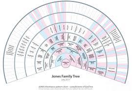 X Dna Fan Chart Hamilton County Genealogical Society Understanding X