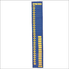 2 Column Graphing Pocket Chart