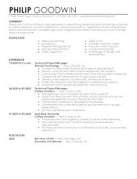 Executive Resume Templates Word Custom Executive Resume Templates Word Fathunter