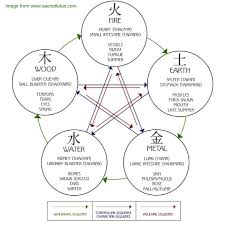 The Five Element Theory Or Wu Xing Allows Us To See The