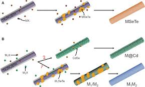 a new generation of alloyed multimetal chalcogenide nanowires by