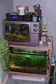 fish tank hydroponic system
