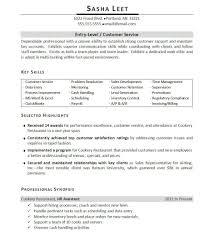 Highlighting Skills Resume Templates Pinterest Resume Examples