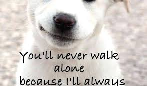 Quotes About Dogs And Friendship Extraordinary Love Quotes For A Dog With Quotes About Dogs And Friendship Best