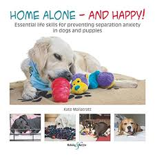 anxiety toys for dogs.  Toys Essential Life Skills For Preventing Separation Anxiety In Dogs And Puppies On Anxiety Toys For Dogs