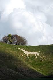 In Het Gebied Van Wiltshire In Engeland Zijn Veel Witte Paarden In