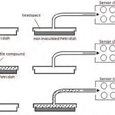 siga sd duct detector wiring diagram unique 0 09 wiring diagram godin sd wiring diagram at Sd Wiring Diagram