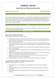 Digital Marketing Resume Sample Best Of Internet Marketing Resume Sample Administrativelawjudge