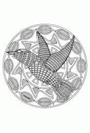 Vogel Mandala Mandala Kleurplaat Van Dieren Norskiinfo