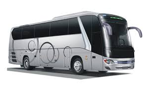 Image result for bus pariwisata