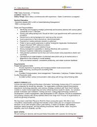 Job Description Examples For Resume Resume Examples Sales Advisor Job  Description Image