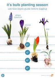 11 fall gardening tips