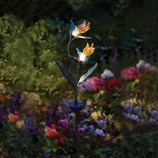 solar garden light delicate flower lights amazing garden lighting flower