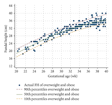 Fundal Height Fh Of Underweight And Overweight And Obese