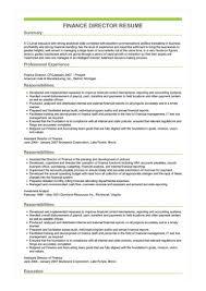 Director Sample Resume Finance Director Resume Great Sample Resume