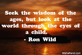 Wisdom Quotes Enchanting Wisdom Quotes