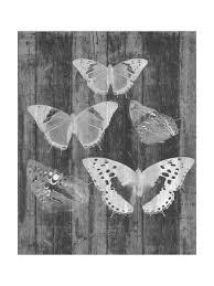 Rustic Butterfly Chart Ii