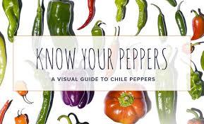 green chili pepper types. Interesting Pepper Intended Green Chili Pepper Types A