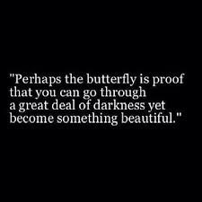 Beautiful Anonymous Quotes Best Of Perhaps The Butterfly Is Proof That You Can Go Through A Great Deal