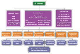 25 Uncommon Vertical Organisation Chart