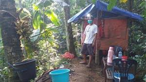Cara membuat gubuk di sawah.untuk berteduh dan ber istirahat.pada tahun berikutnya,gubuk tersebut roboh.pak harno melihat ada lubang lubang kecil di beberapa bagian tiang bambu.dengan melihat kondisi tersebut,faktor penyebab robohnya gubuk tersebut adalah a.sinar matahari b.kadar garam c.air hujan d.serangga. Cara Unik Jalani Isolasi Mandiri Di Kampung Halaman Buat Gubuk Di Hutan Hingga Kemah Di Tepi Sungai Halaman All Tribunnews Com Mobile