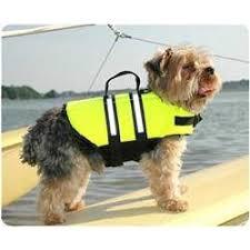 The Dog Life Jacket