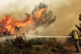 Αποτέλεσμα εικόνας για Φωτιά στο Νέο Βουτζά