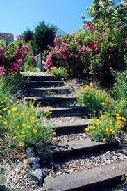 garden stairs sloped garden backyard
