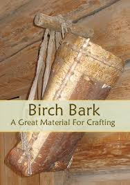Birch Bark  A Great Material For Crafting