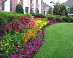 Small Picture Garden Design Garden Design with Flower Bed With Petunia And