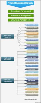 Software Engineer Designations It Project Management Hierarchy Hierarchystructure Com