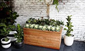 moveable planter on wheels