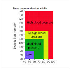 Blood Pressure Chart By Age Pdf 9 Blood Pressure Chart Templates Free Sample Example