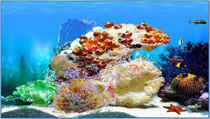 3D Aquarium Screensaver and Wallpaper ...
