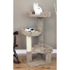Chic cat furniture Homemade Quickview Amazoncom Cat Trees Condos Youll Love Wayfair
