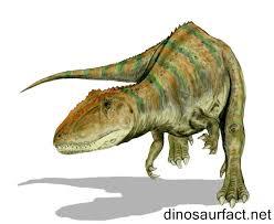 carcharodontosaurus size carcharodontosaurus dinosaur