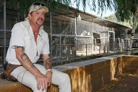 Inside the stretch limo where Tiger King star Joe Exotic's team ...