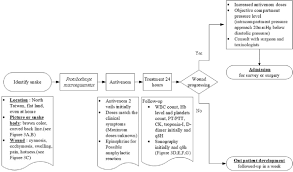 Snake Bite Management Flow Chart Descriptive Study Of Snakebite Patients In Northern Taiwan
