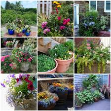 Small Picture garden ideas Awesome Container Garden Ideas Container