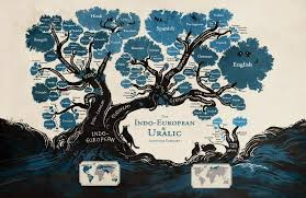 physics buzz hunting language sounds through history language tree of european and uralic language evolution not associated the work by mark pagel and tanmoy bhattacharya credit illustration by minna