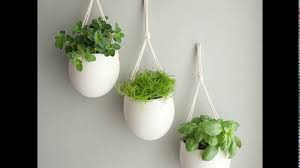 indoor kitchen garden. Indoor Kitchen Garden Design