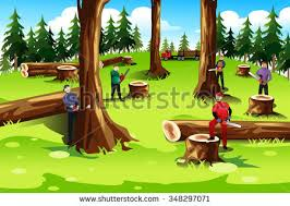 cut down stock images royalty free images vectors shutterstock