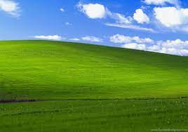 Microsoft Windows Xp Desktop ...
