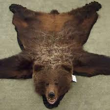 bear rug bear skin rug grizzly bear
