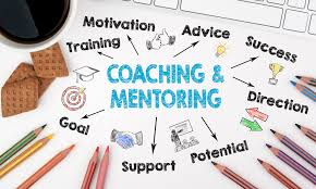 Image result for 1 on 1 mentoring