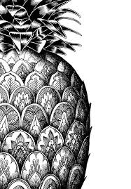 pineapple drawing tumblr. zentangle-doodle of a monochrome pineapple drawing tumblr