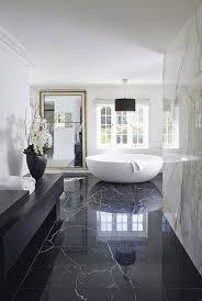 bathroom interior design. Interior Design Bathroom Photos Of Nifty Ideas About On Luxury T